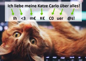 Cyber Security Passphrase mit Katze_Valery Kudryavtsev überarbeitet von Moritz Meissner